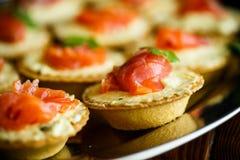 Tartlets с завалкой сыра и посоленным salmon мясом Стоковая Фотография RF