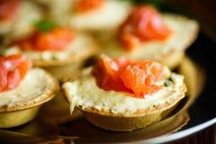 Tartlets с завалкой сыра и посоленным salmon мясом Стоковое Изображение