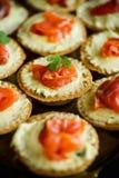 Tartlets с завалкой сыра и посоленным salmon мясом Стоковые Фото