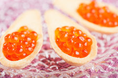 Tartlets с красной икрой Стоковое фото RF