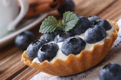 Tartlets с крупным планом голубики и плавленого сыра Стоковые Фото