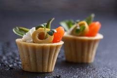 Tartlets с сыром семг и сыра с микро-зеленым на темной предпосылке Стоковая Фотография