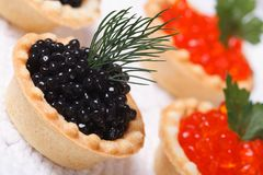 Tartlets с черной икрой и красной икрой Стоковое Изображение