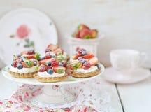 Tartlets ягод лета Стоковая Фотография RF