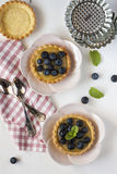 Tartlets with blueberries Royalty Free Stock Photos