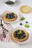 Tartlets with blueberries Stock Image