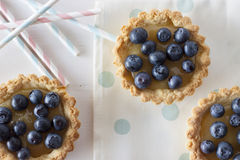 Tartlets with blueberries Stock Photos
