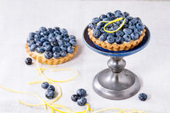 Tartlets with blueberries Royalty Free Stock Image