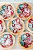 Tartlets with blueberries and raspberry. Small tarts with fruits. Tartlets with blueberries and raspberry. Small tarts with fruits Stock Image