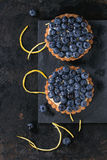 Tartlets with blueberries Stock Images
