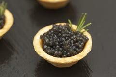 Tartlets com fim preto do caviar acima Fim do alimento gourmet acima, aperitivo delicatessen Alimento do gourmet Textura do cavia imagem de stock