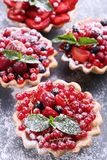 Tartlets da sobremesa com bagas Fotos de Stock Royalty Free