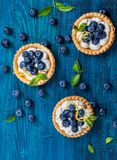 Tartlets deliciosos del arándano Fotos de archivo