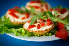 Tartlets filled with red fish Stock Photography
