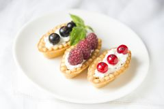 Tartlets with fresh fruits Royalty Free Stock Photo