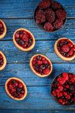 Tartlets with fresh red berries Stock Images