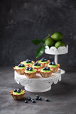 Tartlets with lime curd and fresh blueberries Stock Photos