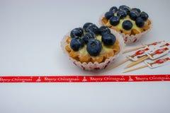 Tartlets med blåbär arkivfoto