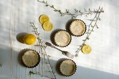 Tartlets met citroen en twijgen Royalty-vrije Stock Afbeeldingen
