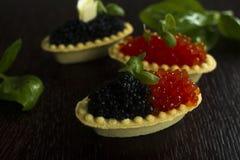 Tartlets negros y rojos del caviar Imagen de archivo libre de regalías
