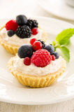 Tartlets with Ricotta and Fresh Fruits royalty free stock photos
