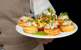 Tartlets with salad on dish. Held by waiter Royalty Free Stock Photography