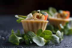 Tartlets with salmon and cheese cheese with micro-green on a dark background. Cold appetizer Stock Photos