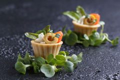 Tartlets with salmon and cheese cheese with micro-green on a dark background. Cold appetizer Royalty Free Stock Photo