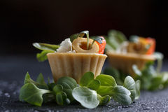Tartlets with salmon and cheese cheese with micro-green on a dark background. Cold appetizer Royalty Free Stock Photography