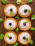 Tartlets Royalty Free Stock Images