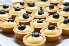 Free Tartlets With Cream And Blueberries Stock Image - 160659311