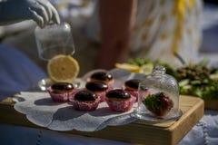 Tartlets z czekoladowym lodowaceniem Obrazy Royalty Free