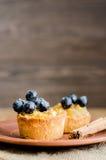 Tartlets z jabłkiem, winogronami i cynamonem na glina talerzu, Obraz Royalty Free