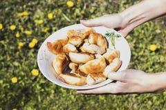 Tarts, ένα πιάτο, η χλόη Στοκ Φωτογραφία