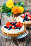 Tarts επιδορπίων φρούτων στοκ εικόνα