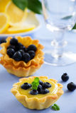 tarts with lemon cream and blueberries. Stock Image
