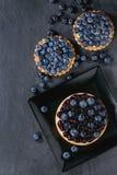 Tarts med blåbär Royaltyfria Foton