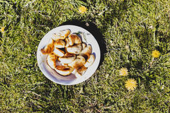 Tarts, a plate, the grass royalty free stock photography