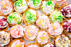 Tarts with whipped cream Stock Image
