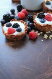 Tarts with yoghurt and fruits Stock Images