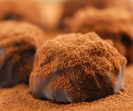 Tartufi di cioccolato fotografia stock libera da diritti