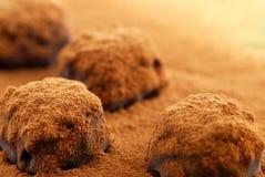 Tartufi di cioccolato immagini stock libere da diritti