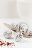 Tartufi di cioccolato con polvere shugar Fotografie Stock Libere da Diritti