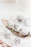 Tartufi di cioccolato con polvere shugar Immagine Stock