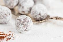 Tartufi di cioccolato del primo piano con la polvere dello zucchero Immagine Stock Libera da Diritti
