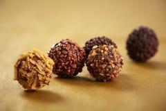 Tartufi di cioccolato a macroistruzione Immagine Stock Libera da Diritti