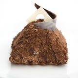 Tartufo di cioccolato Fotografia Stock Libera da Diritti