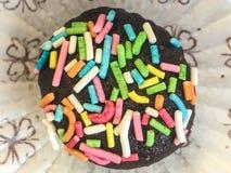 Tartufo di cioccolato con le praline colorate Immagine Stock Libera da Diritti