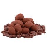 Tartufo e fette di cioccolato fotografie stock
