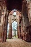 Tartukathedraal in Tartu Dorpat, Estland stock afbeeldingen